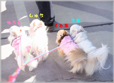 IMG_2134(補3).jpg