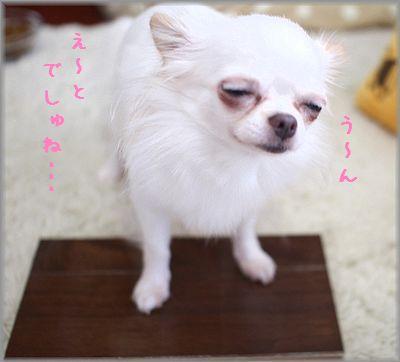 IMG_7610(補2).jpg
