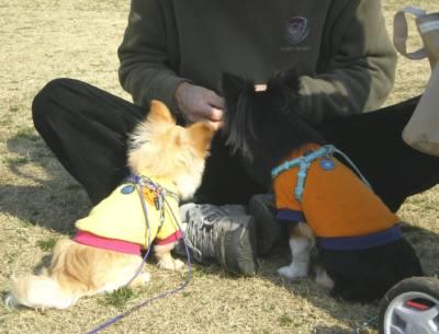2009-03-16_14-45(補).jpg