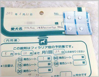 DSCF0012(補2).jpg