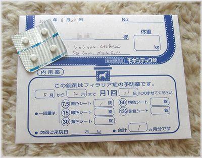 DSCF0380(補2).jpg
