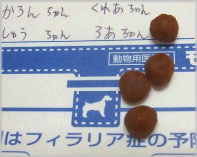 DSCF0561(補2).jpg