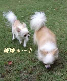 DSCF7690(補).jpg