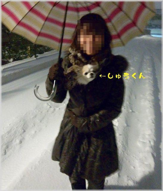 DSC_0359(補).jpg