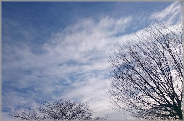 DSC_0594(補).jpg