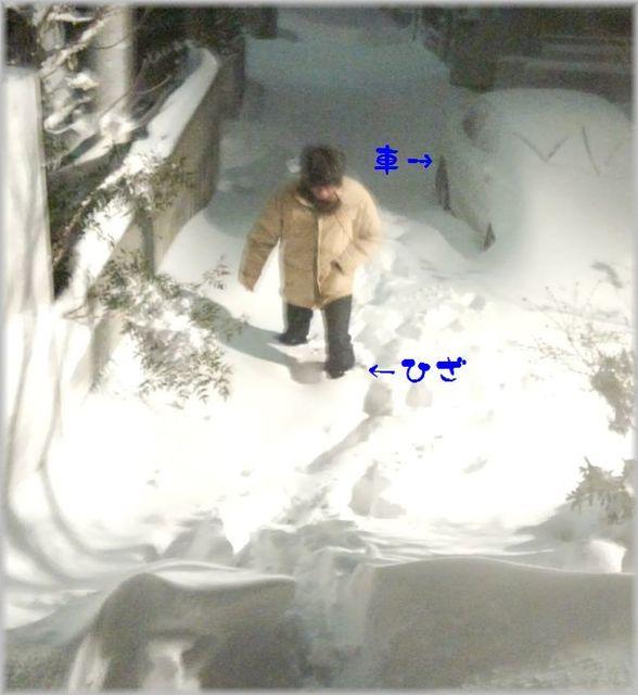 DSC_1173(補).jpg