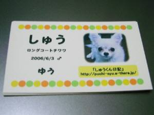 IMGP7038(補).jpg