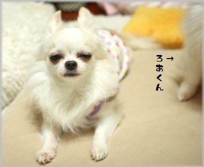 IMG_0657(補4).jpg