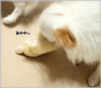 IMG_0746(補4).jpg