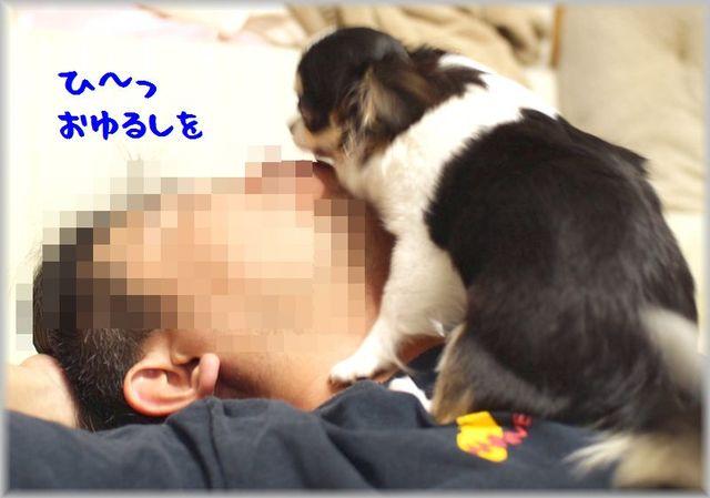IMG_0958(補).jpg