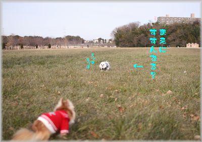 IMG_2002(補3).jpg
