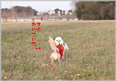 IMG_2003(補3).jpg