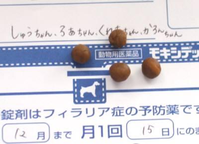 IMG_3748(補2).jpg