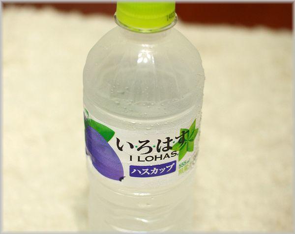 IMG_4286(補5).jpg
