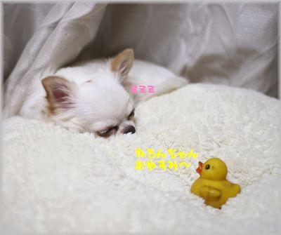 IMG_9758(補2).jpg