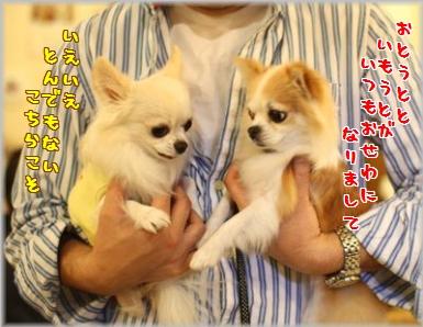 IMG_9847(補2).jpg